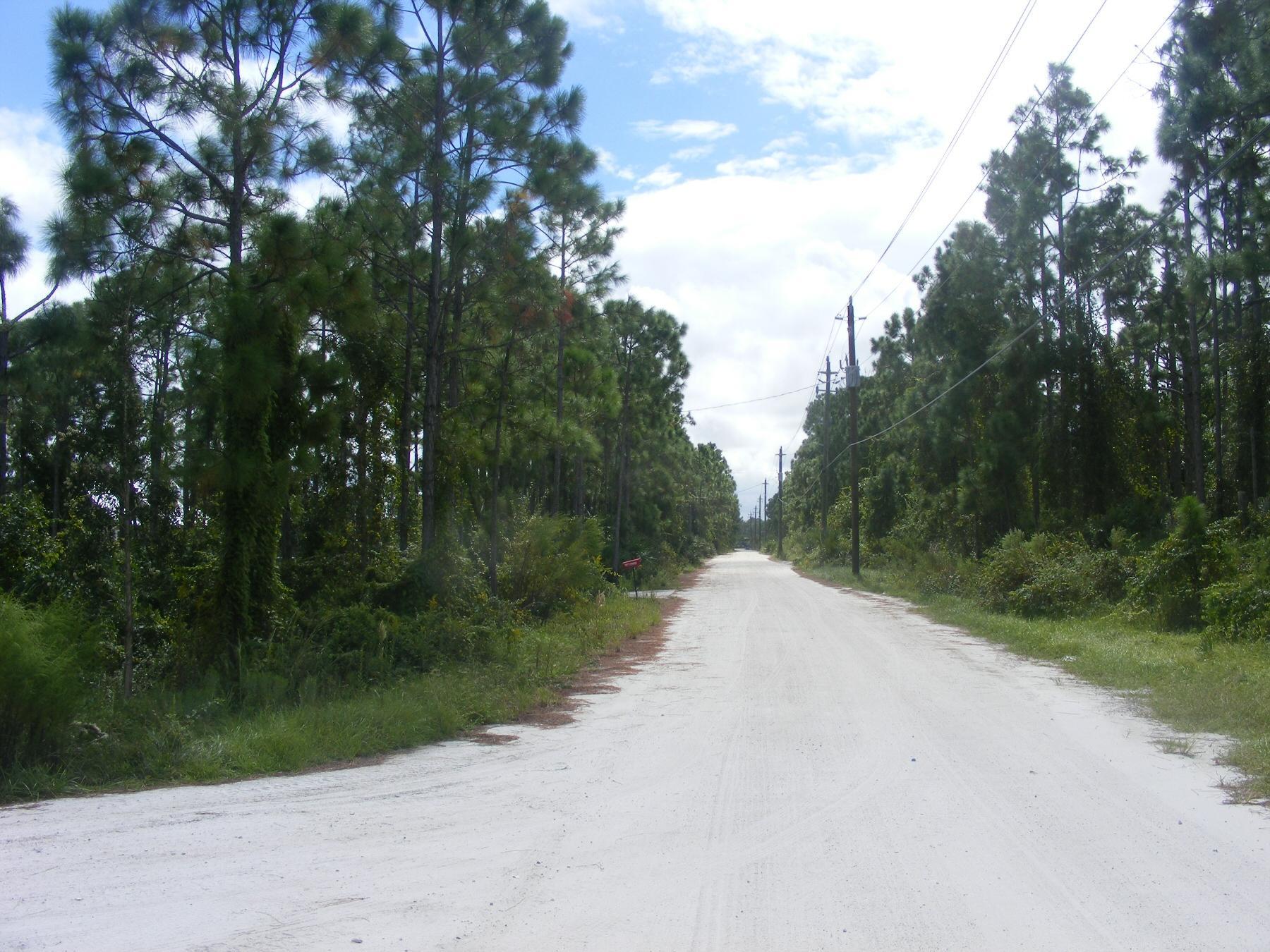 Tree Top Trail Street View