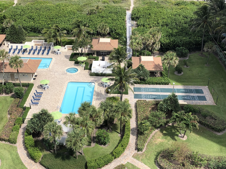 Oceantree Pools