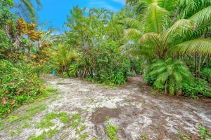 22531 Orange Blossom Lane Boca Raton FL 33428