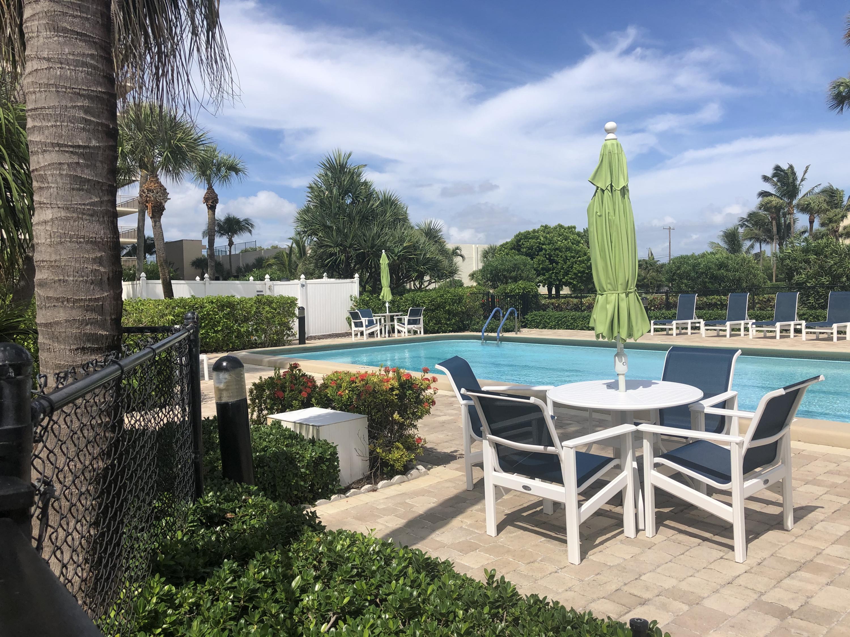 Oceantree Pool