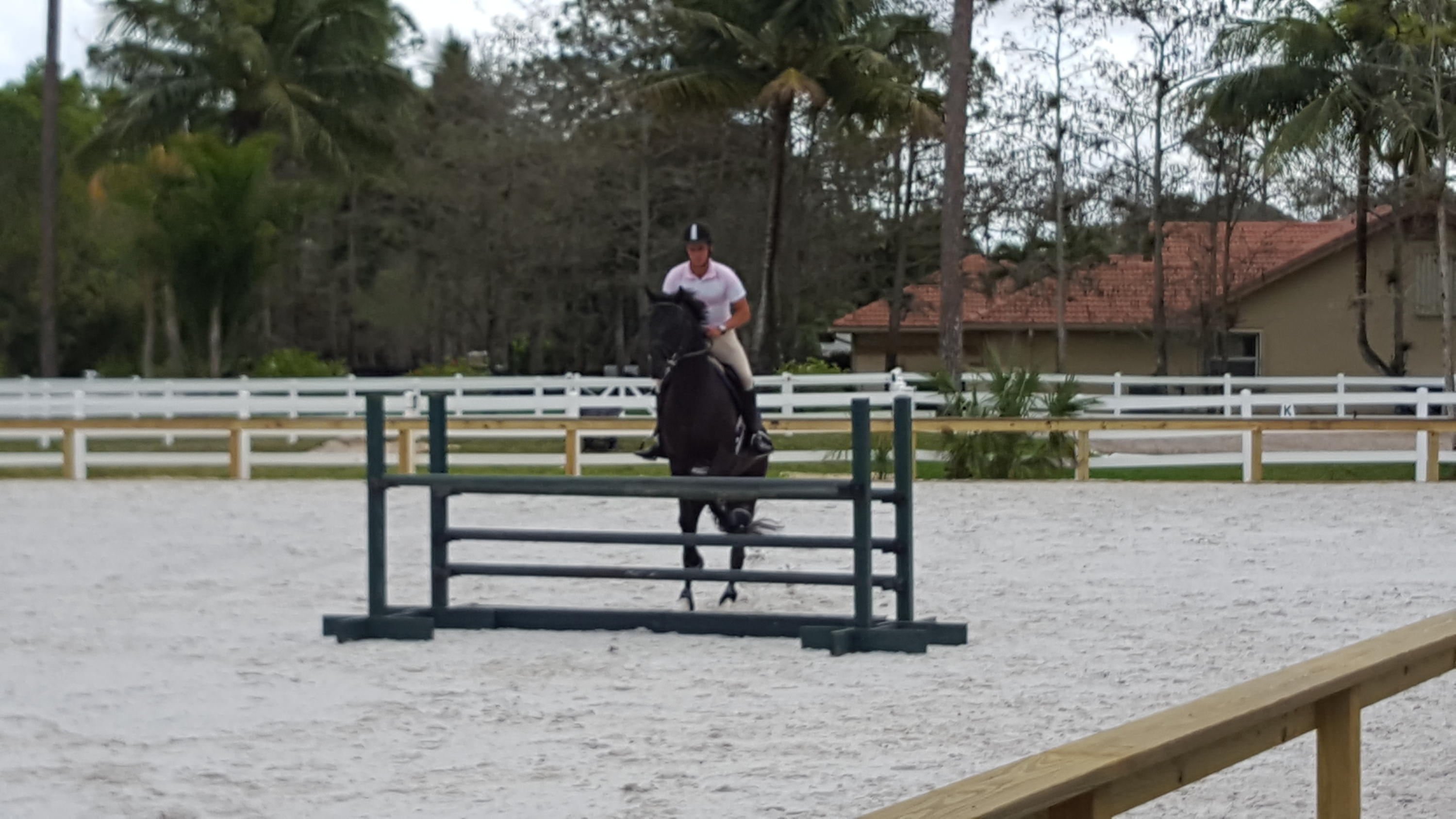 Great riding ring