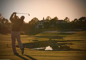 Pro Golfer a 2010 AAP