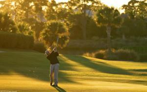 Pro Golfer b 2010 AAP