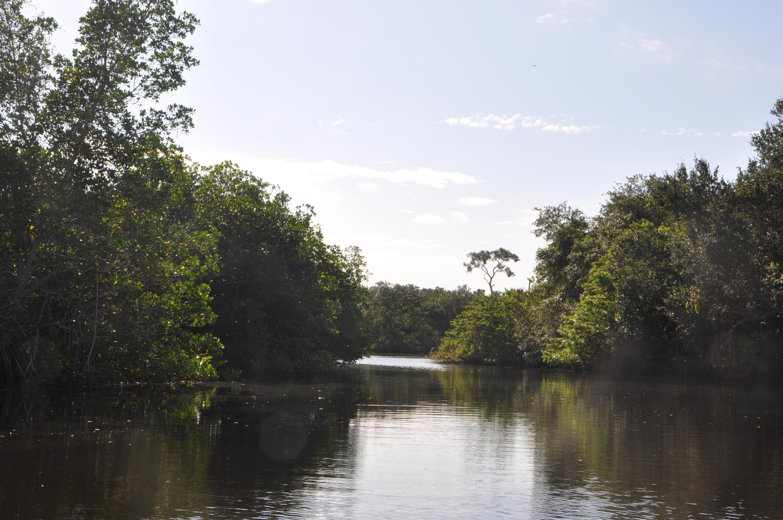 Image 92 For 609 Hidden River Drive Se