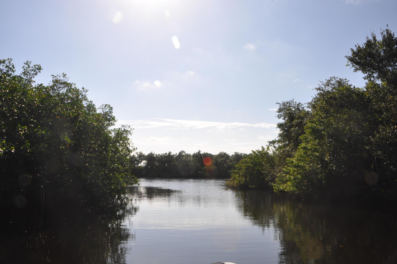 Image 93 For 609 Hidden River Drive Se