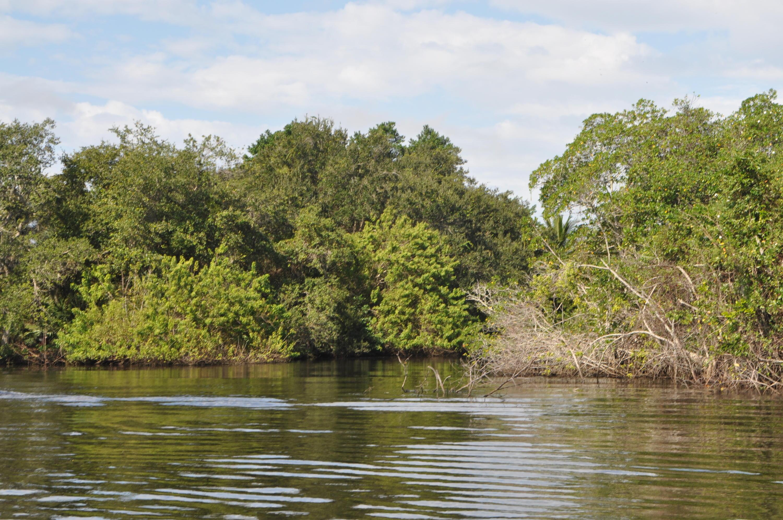 Image 3 For 609 Hidden River Drive Se