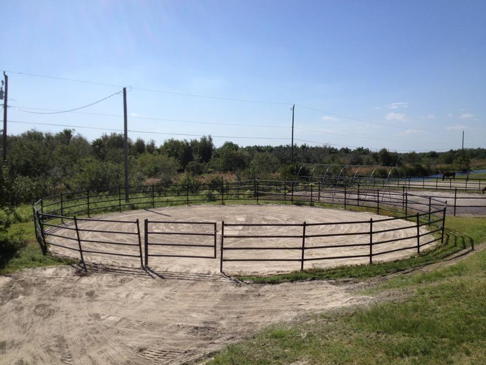 Wellington, Florida 33470, 3 Bedrooms Bedrooms, ,2 BathroomsBathrooms,Rental,For Rent,Flying Cow Ranch,RX-10673932
