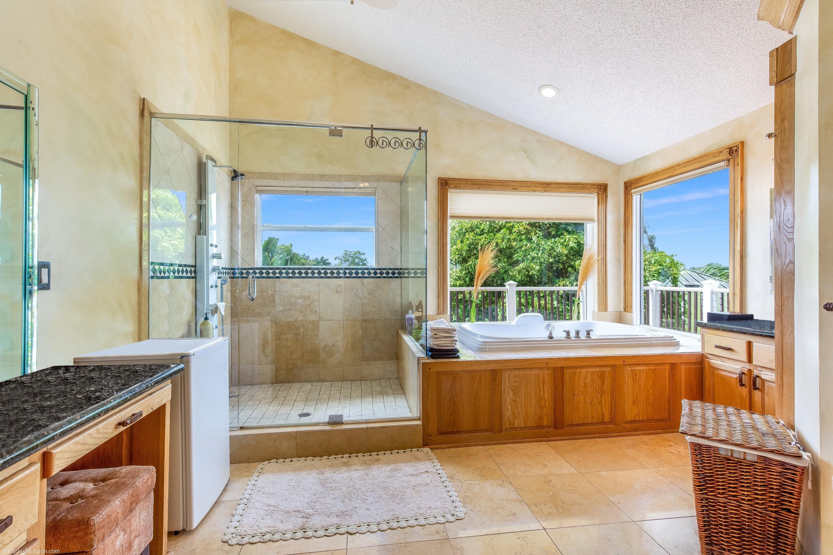 Master Bathroom - Shower & Jacuzzi