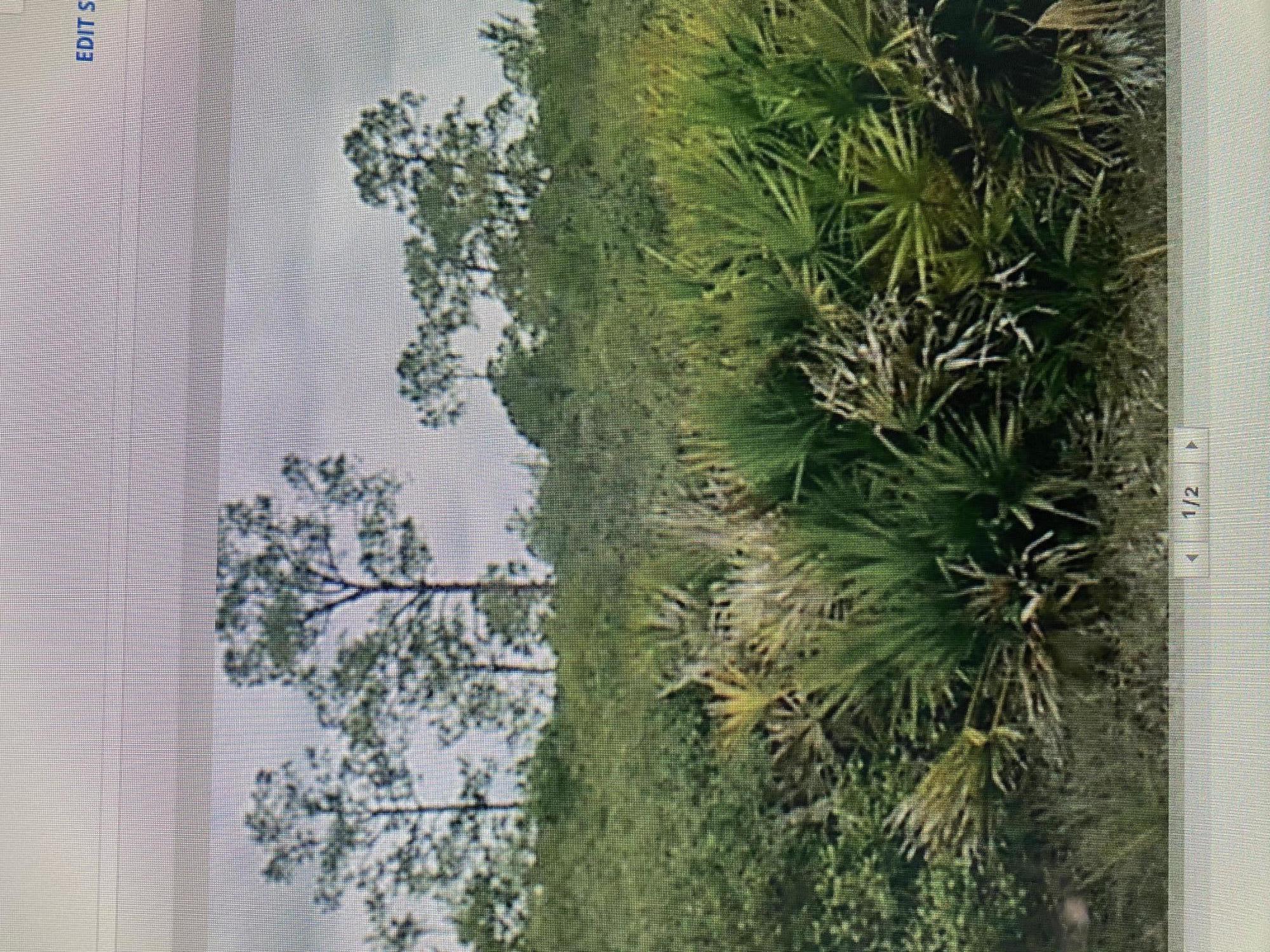 00 Murcott Boulevard, Loxahatchee, Florida 33470, ,Land,For Rent,Murcott,RX-10683024