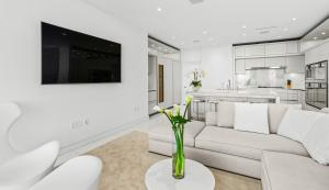 16.2 Living Room-Kitchen