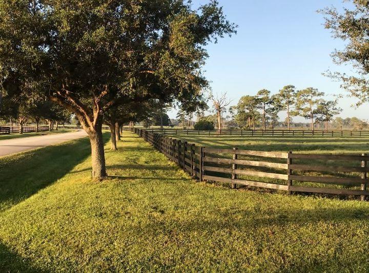 Hunter Drive view