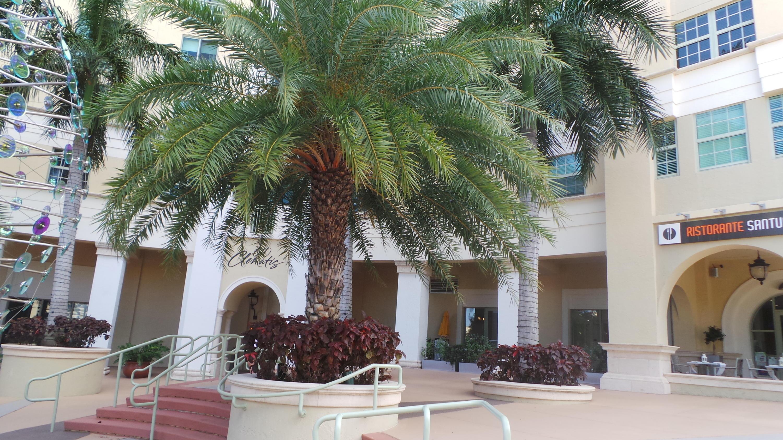 610 Clematis Street 536 West Palm Beach, FL 33401 photo 58