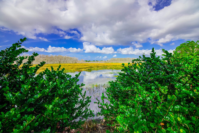8856 San Andros West Palm Beach, FL 33411 photo 52
