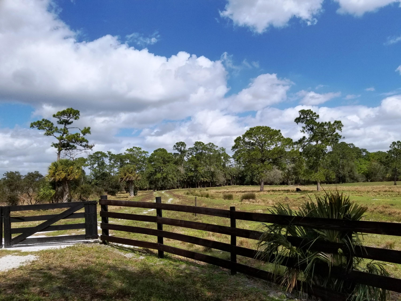 Lot 11 pasture