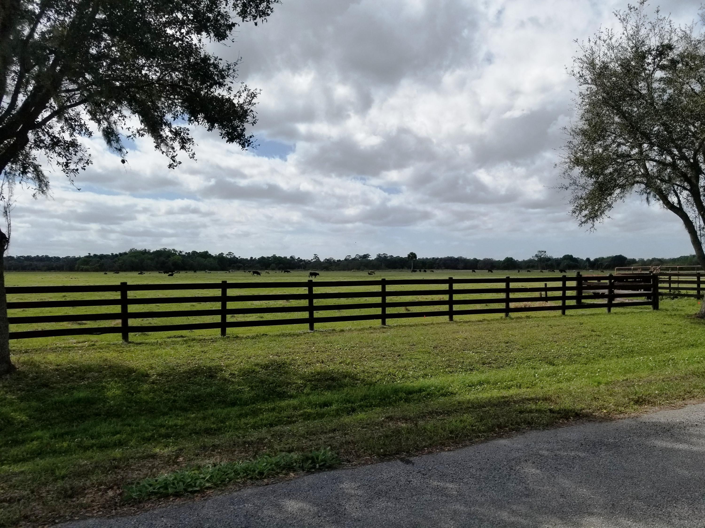 Jockeys Run Lot 31 gates