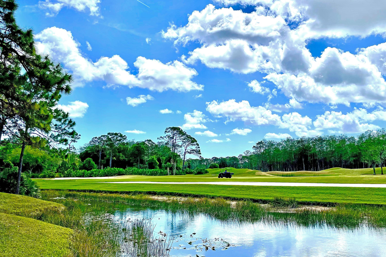backyard Golf Course 1