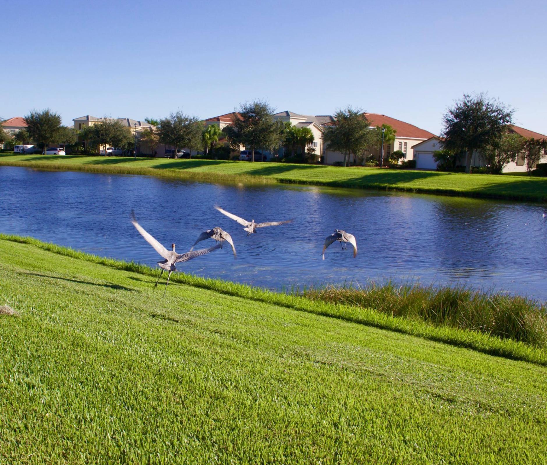11489 SW Lake Park Drive Port Saint Lucie, FL 34987 photo 33