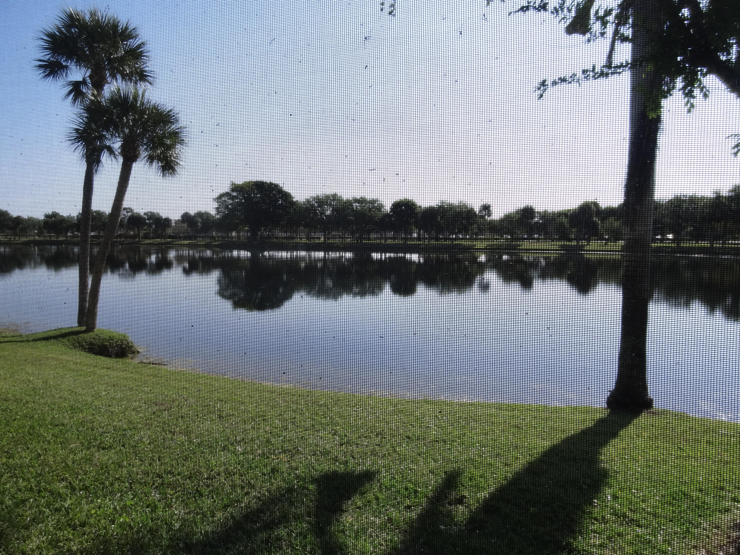 Awesome extra wide lake view in this 3/2/2 house at the Lake Catherine community. Screened pool and patio right on the lake. Close to major Hwy-s and Costco.