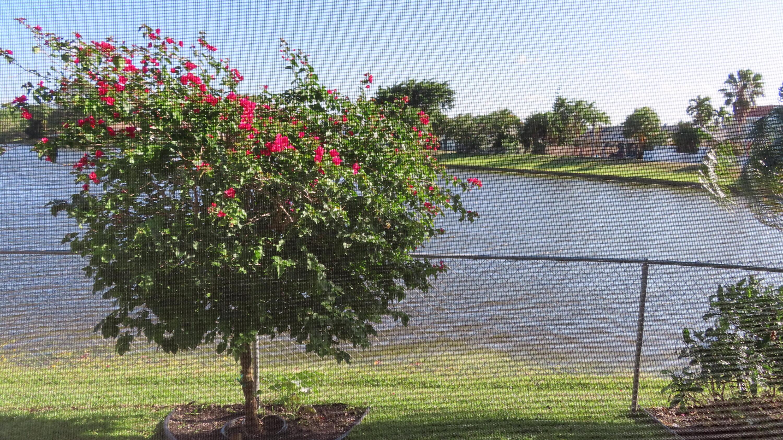 9874 Robins Nest Road Boca Raton, FL 33496 photo 10