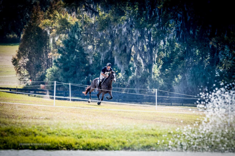 Brinkman-6734 gallop