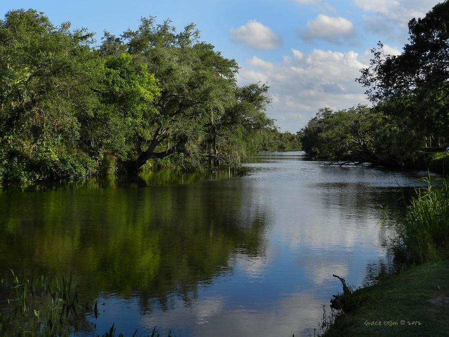 north-fork-st-lucie-river-grace-dillon