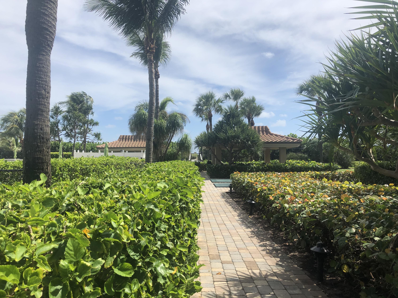 Oceantree Grounds