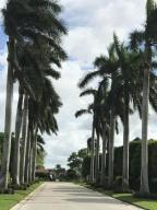 royal palm tree entrance to Lalique