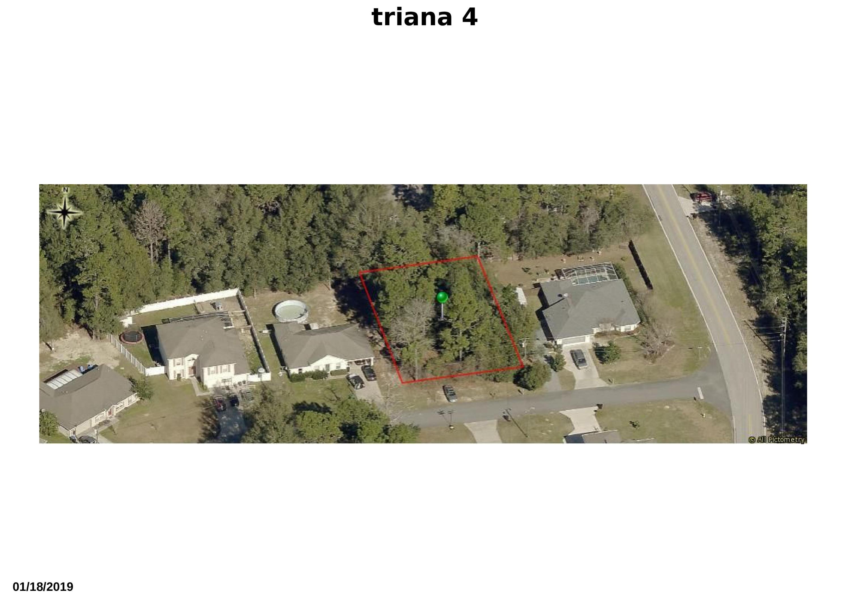 triana 4