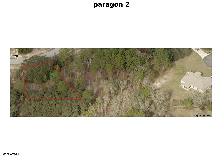paragon 2