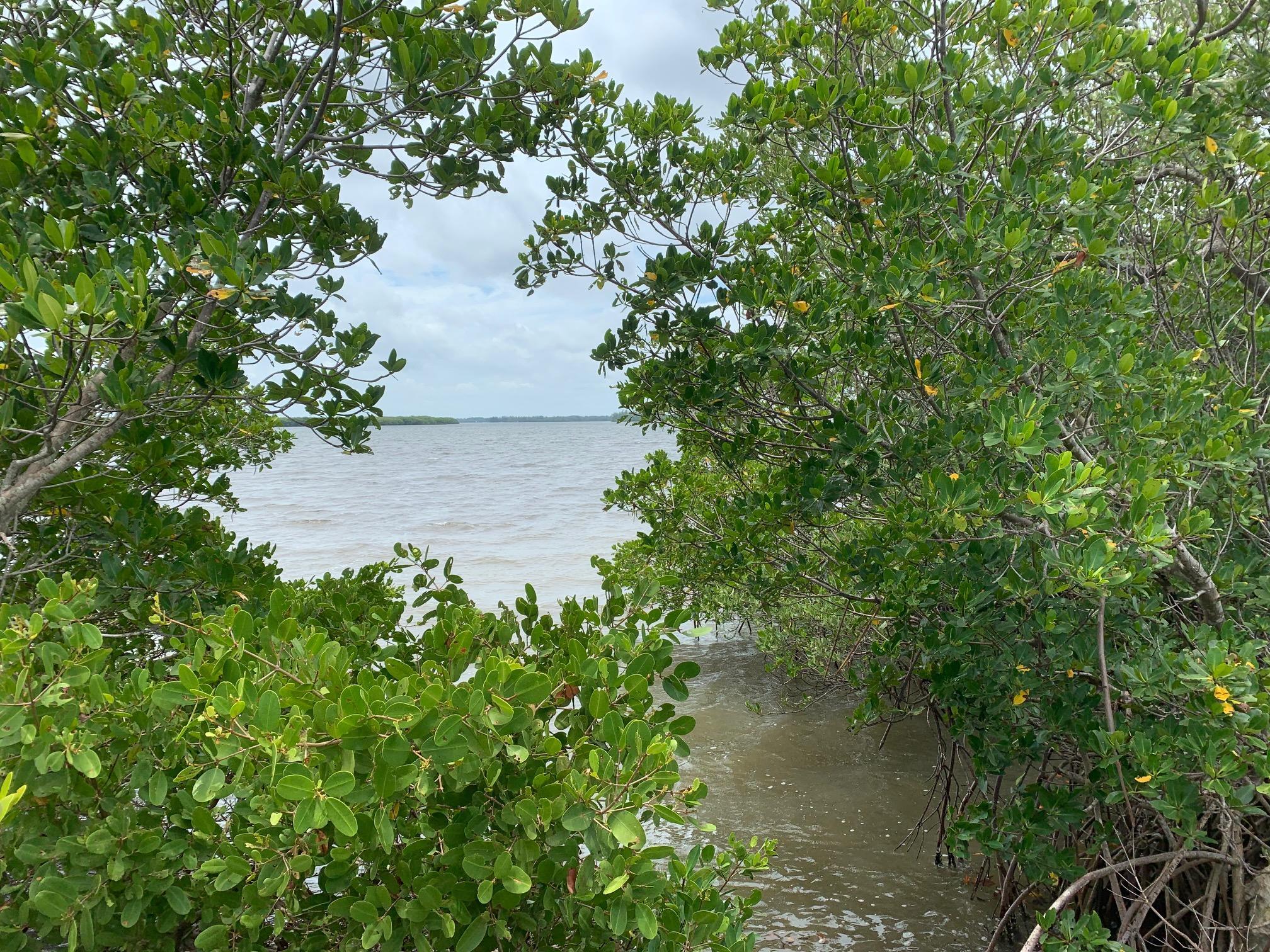 VBOC Lagoon IMG_5715