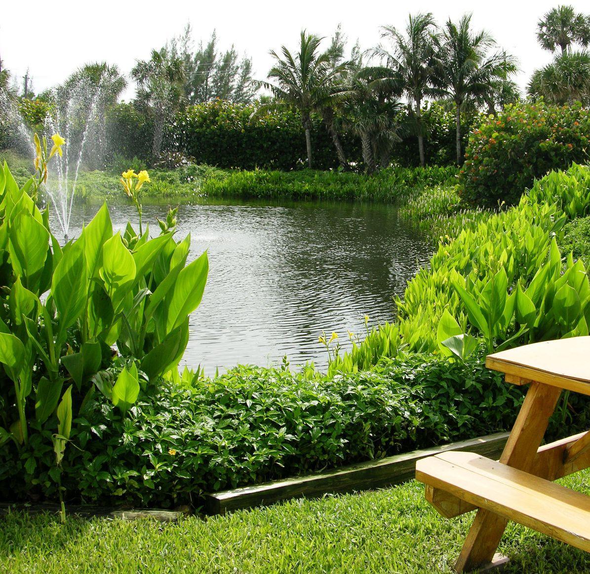 Picnic bench by pond