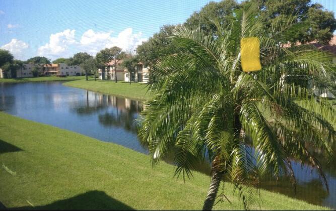 15461  Pembridge Drive 205 For Sale 10716291, FL