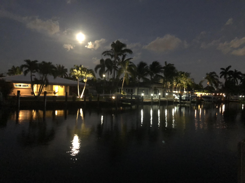 Enjoy moon risings