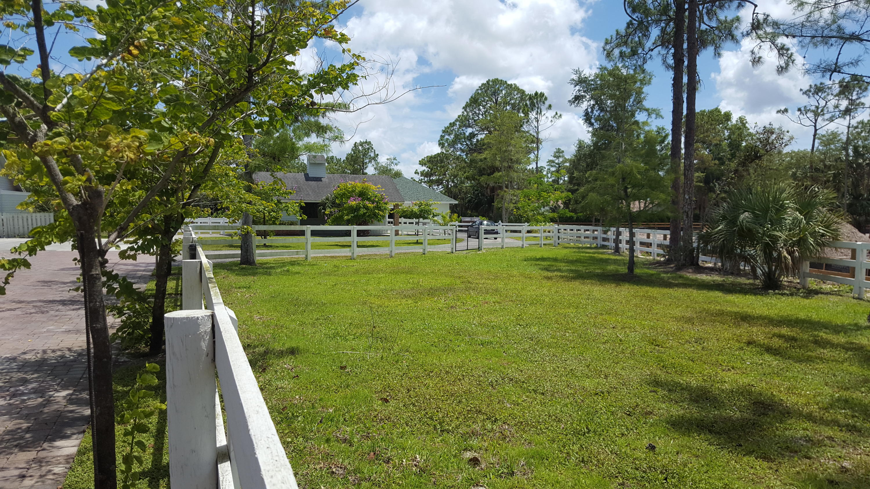 Large front paddock