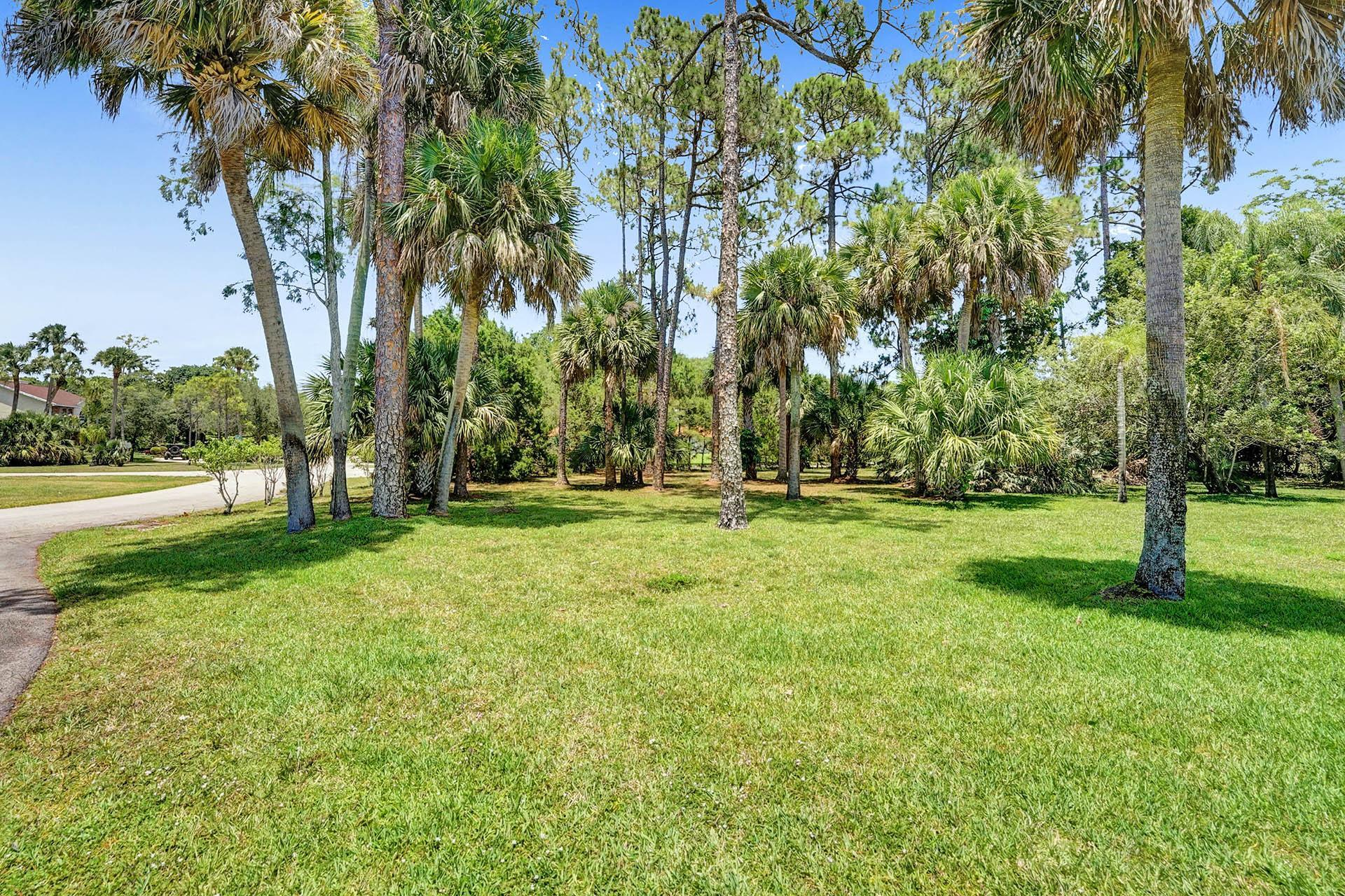 160 Forester Court Wellington, FL 33414 photo 59