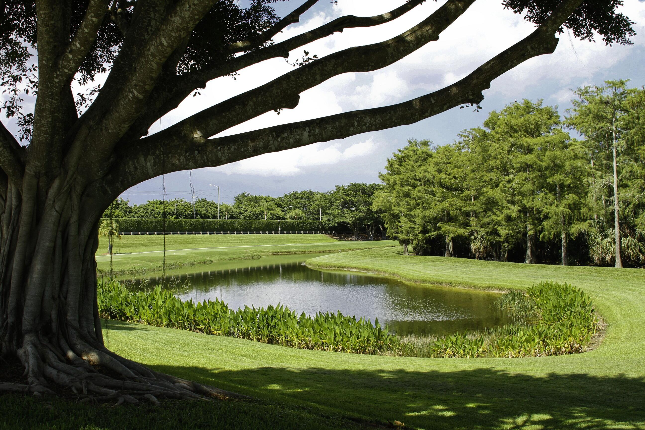 4461 Kensington Park Way Lake Worth, FL 33449 photo 50