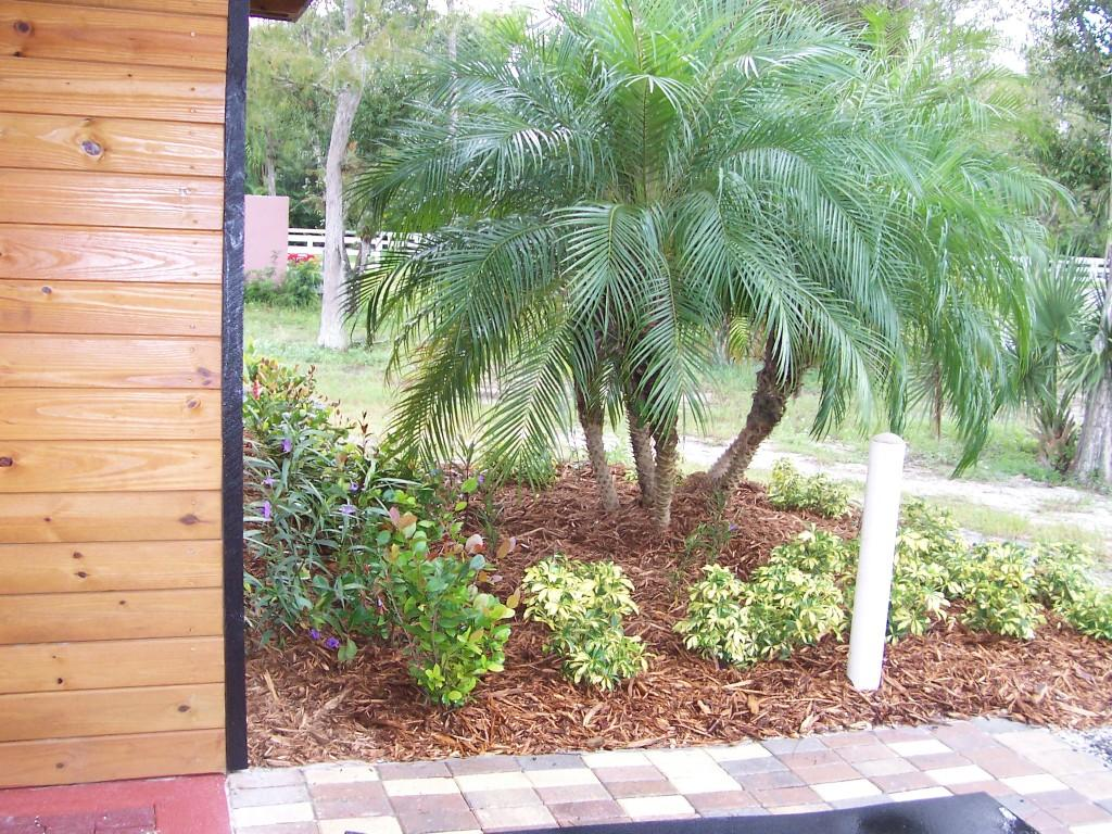 PAVERED AND LANDSCAPED