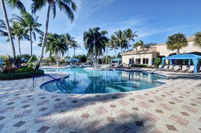VP beautiful pool