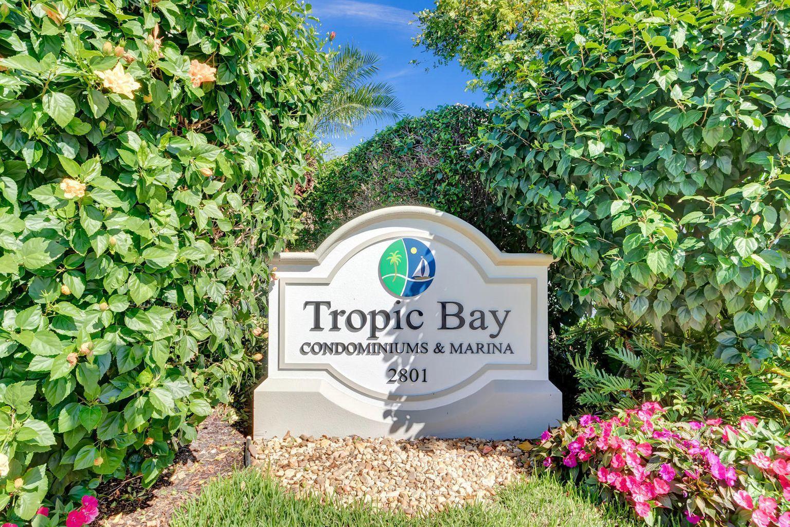TropicBay1