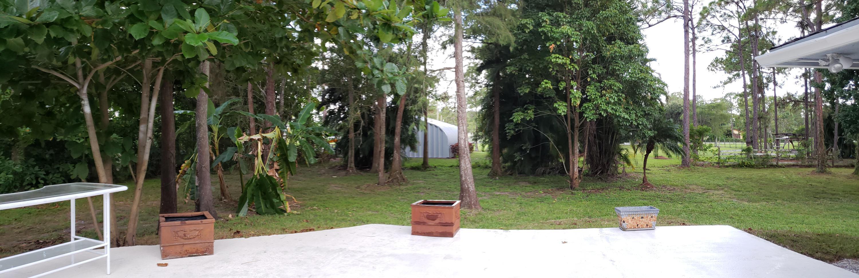 View of Yard13_184737