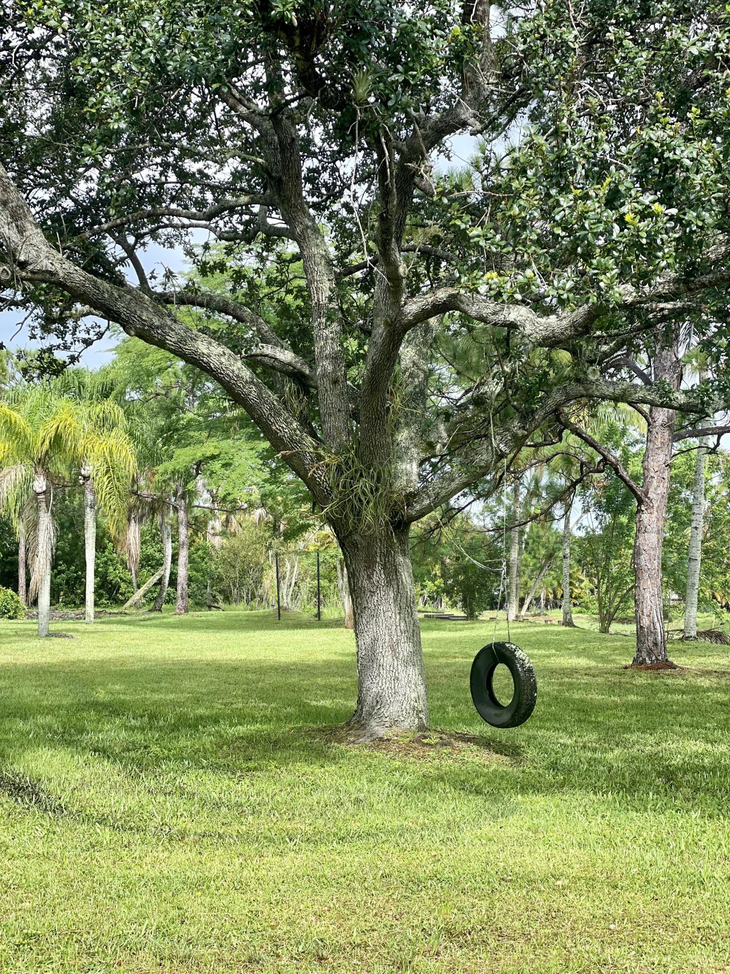 8661 112th Terrace N Palm Beach Gardens, FL 33412 photo 18