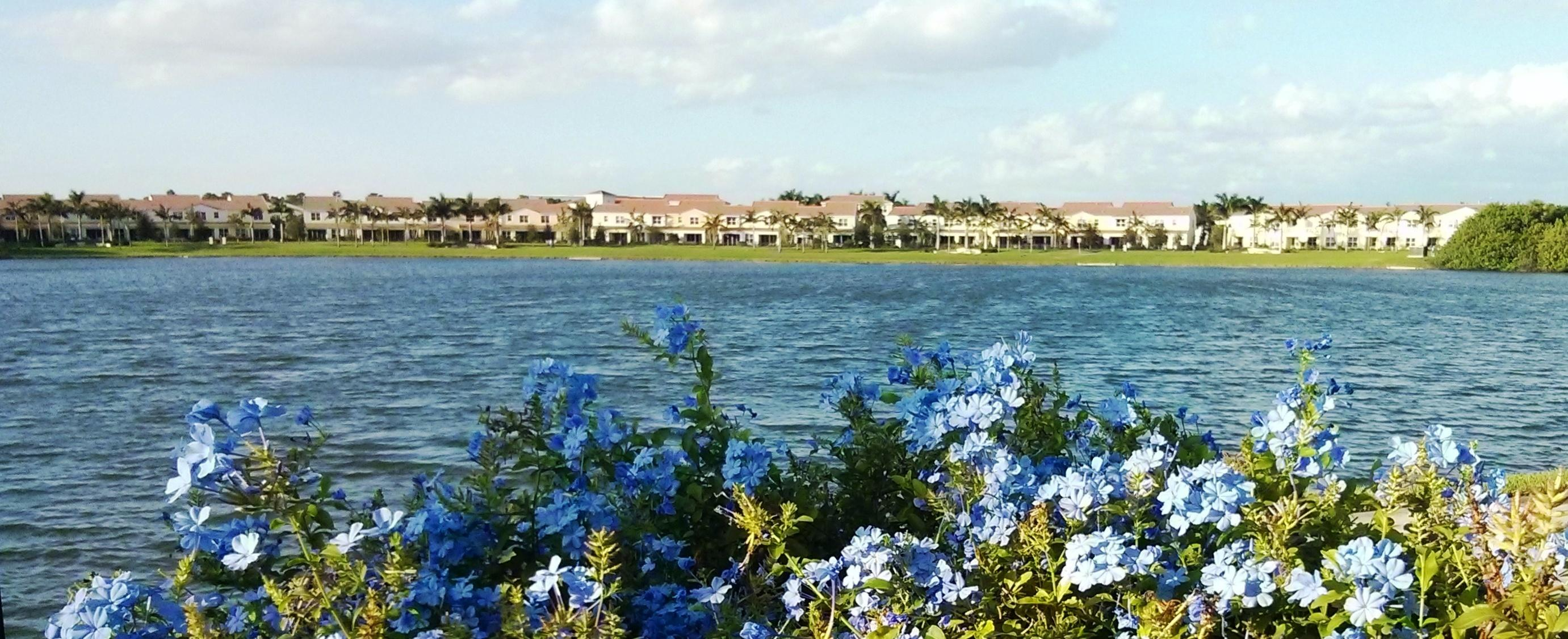 Centra 011 lake mit blue flowers panoram