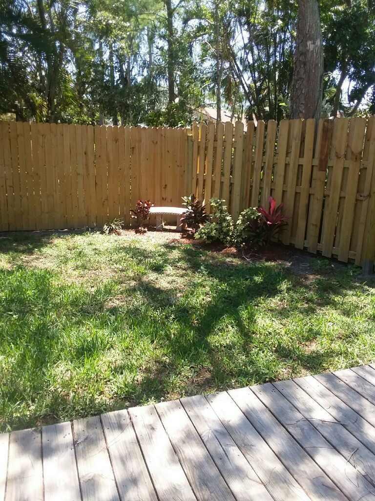 primrose backyard