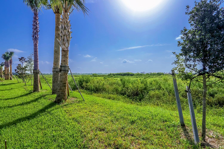 9916 Timber Creek Preserve View