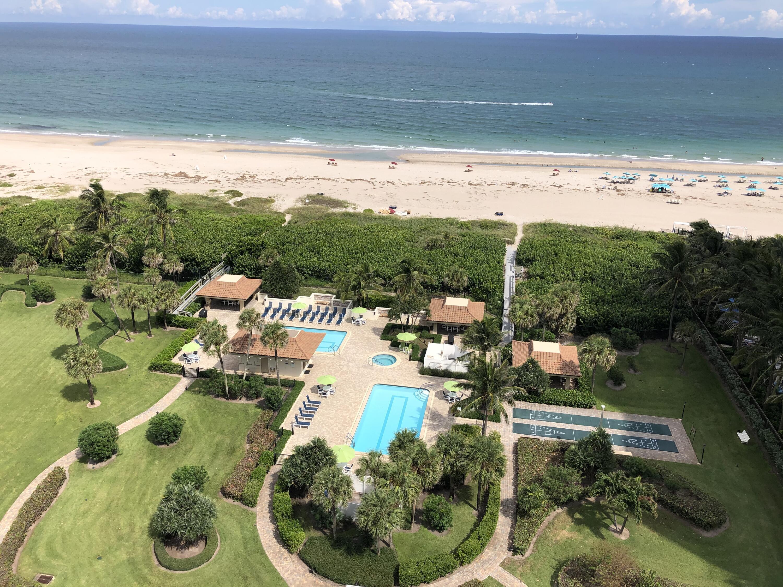 Oceantree Pools & Beach