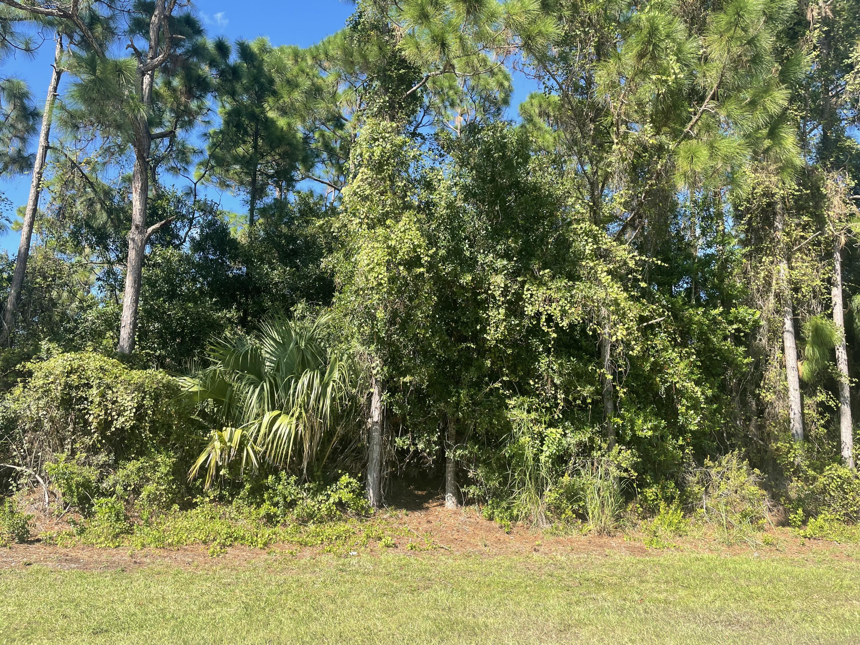 Home for sale in PORT ST LUCIE-SEC 19- BLK 1911 LOT 19 (MAP 43/24S) (OR 644-2823) Port Saint Lucie Florida