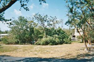 150 S BAHAMA Drive, Duck Key, FL 33050
