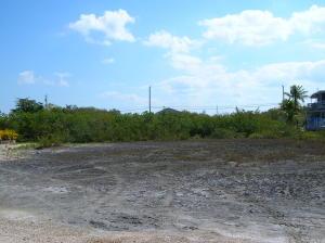 Lot 7 Grenada Lane, Little Torch Key, FL 33042