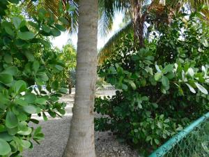 Vacant Orange Drive, Key Largo, FL 33037