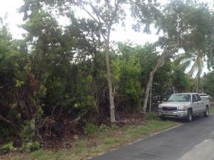 0 Iris Drive, Big Pine Key, FL 33043